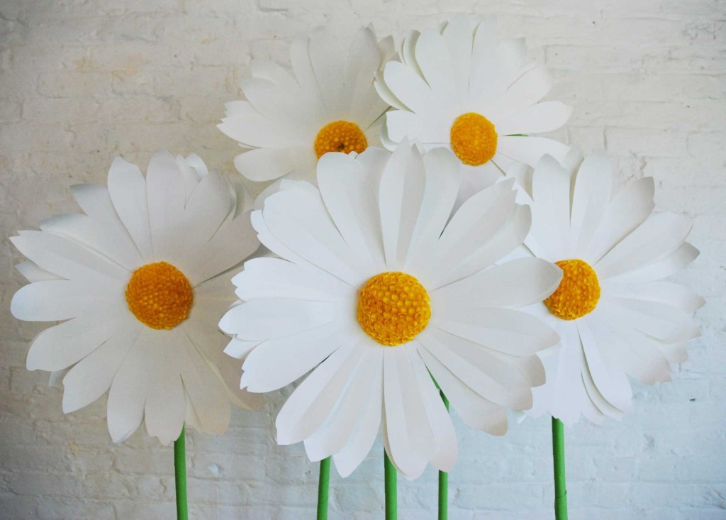 Visual impact blog archive giant paper flowers daisys mightylinksfo